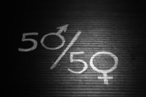 How occupational gender segregation leads to the paradox of